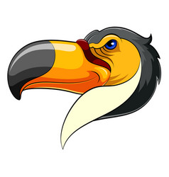 mascot head an toucan vector image