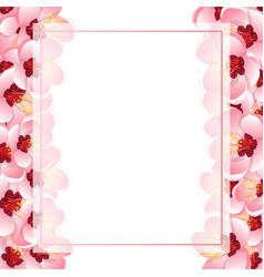 Momo peach flower blossom banner card border vector
