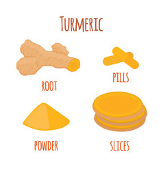 Turmeric root spice slicespowder pills vector