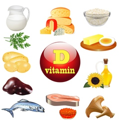 vitamin d and plant vector image vector image