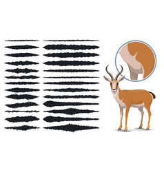 Animal fur texture brush strokes design elements vector