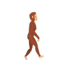 Female homo erectus biology human evolution stage vector