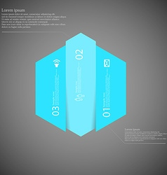 Hexagonal infographic template vertically divided vector
