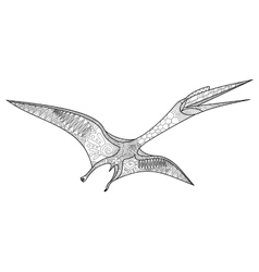Pterosaur coloring book for adults vector image