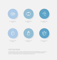 set of 6 editable vegetable outline icons vector image