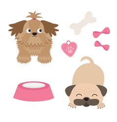 Shih tzu and pug mops dog set isolated flat design vector