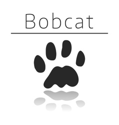 Bobcat animal track vector image