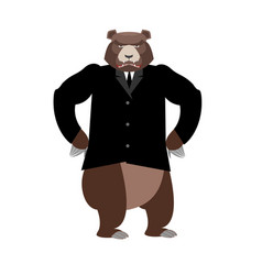 bear boss grizzly businessman in business suit vector image