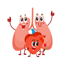 funny smiling human lungs and heart characters vector image vector image