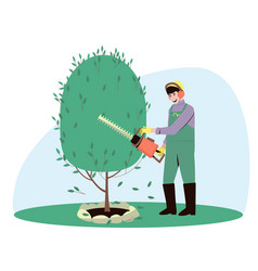 A gardener trims tree plant with hedge trimmer vector