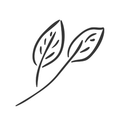 Natural leaves icon vector