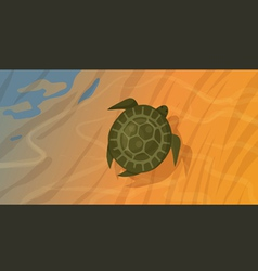 Seaturtle vector