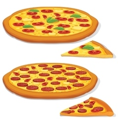 Pepperoni and Margarita Pizza vector image