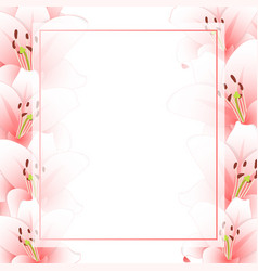 pink lily flower banner card border isolated on vector image