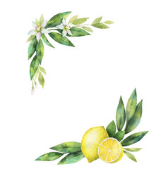 Watercolor hand drawn wreath with lemon and vector