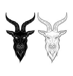 Baphomet demon goat head hand drawn print or vector
