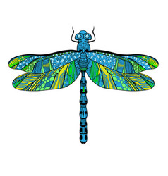 Beautiful bright dragonfly concept vector