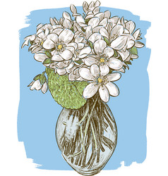 Bouquet of the spring violets vector