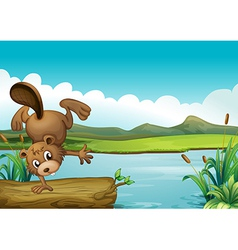Cartoon River Beaver vector