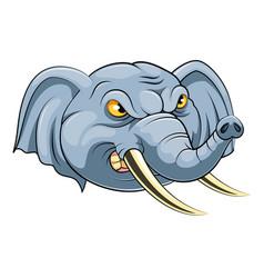 Mascot head an elephant vector