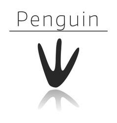Penguin animal track vector image