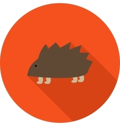 Pet Hedgehog vector