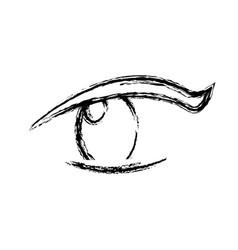 sketch eye human optical look pupil vector image