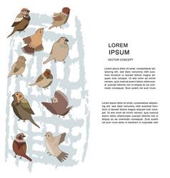 Sparrow character vector