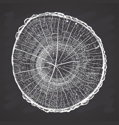 Tree log wood growth rings grunge texture on vector