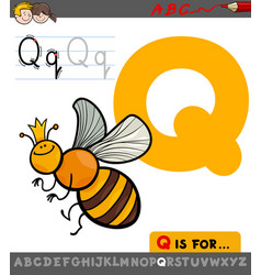 letter q with cartoon quenn bee character vector image vector image