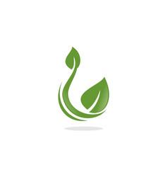 natural leaf logo vector image vector image