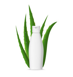 realistic detailed 3d aloe vera and white bottle vector image