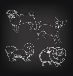 sketch of set dogs on blackboard vector image