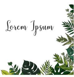 Trendy summer tropical leaves vector
