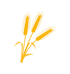wheat ear icons of the nature earns vector image