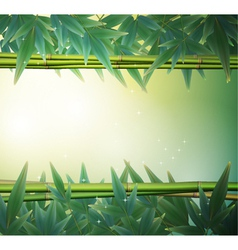 Glowing bamboo background vector image vector image