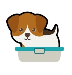 Cute puppy little portrait lovely bathtub vector