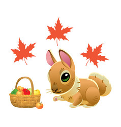cute rabbit with a wicker basket full of apples vector image