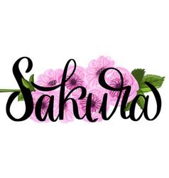 sakura ink lettering vector image