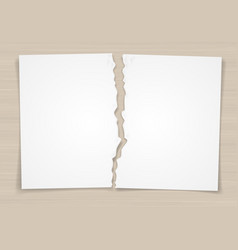 Torn white paper vector