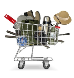 Trolley with Fish tackle vector image
