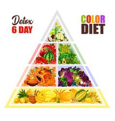 Vegetarian color diet food pyramid vector