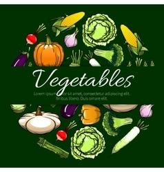 Vegetables emblem design for banner vector image vector image
