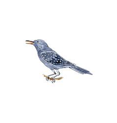 Calling bird for 12 days christmas charms vector