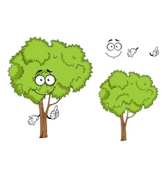 Cartoon isolated green tree character vector image