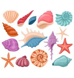 cartoon seashells summer beach sea shells vector image