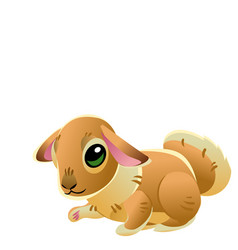cute bunny isolated on white background of vector image