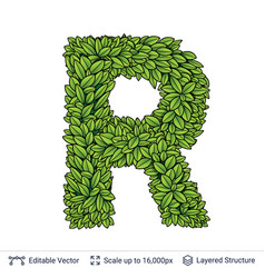 Letter r symbol of green leaves vector