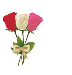 Roses bouquet with bow vector