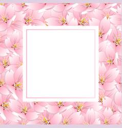 sakura cherry blossom banner card vector image